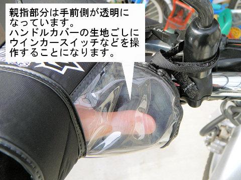 20101230-05.jpg