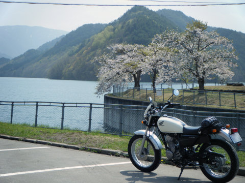 20110508-04.jpg