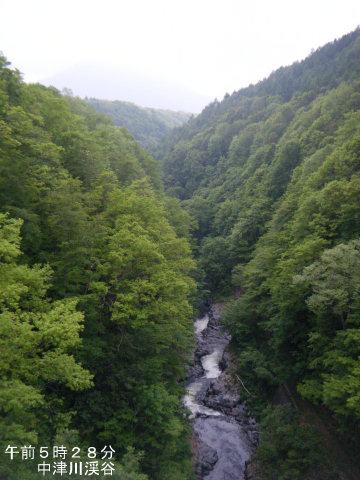 20110605-15.jpg