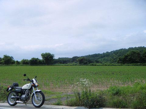 20110703-04.jpg