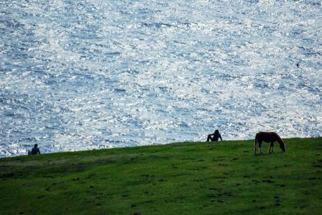 隠岐・西之島の摩天崖