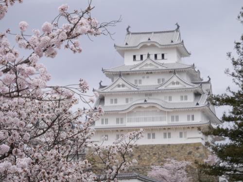 姫路城 桜②