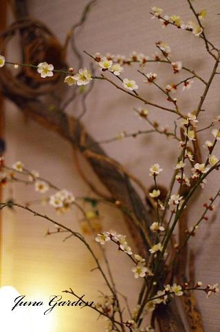 梅の切り枝160304