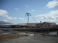 東日本大震災から5年・陸前高田市2016-02-28-116