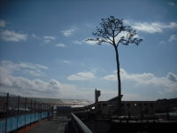 東日本大震災から5年・陸前高田市2016-02-28-124