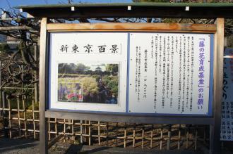 東京walk0109