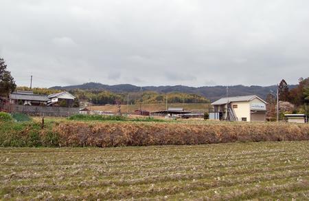 160307田園風景