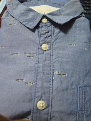 メダカのシャツ
