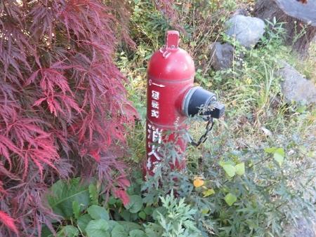 忍野八海 消火栓