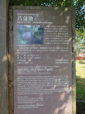 忍野八海 菖蒲池