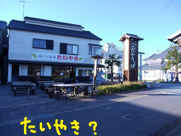 P1850520.jpg
