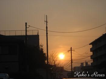 s-IMG_0085k1.jpg
