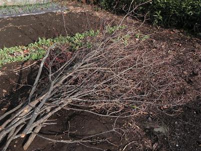 雑木の活用