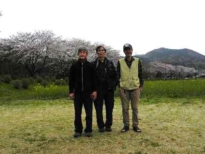 日和田山をバックに桜並木