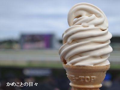 DSC_0004-soft.jpg