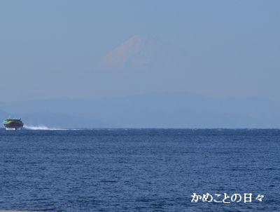 DSC_0090-2.jpg
