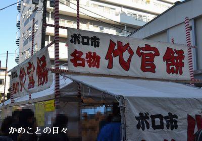 DSC_0499-d.jpg