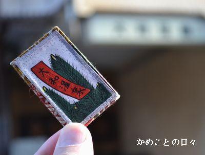 DSC_0947-y.jpg