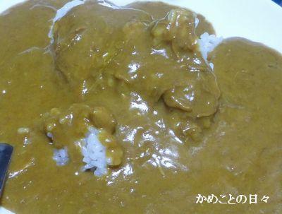 P1260423-curry.jpg
