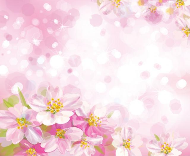 s_spring-back015.jpg