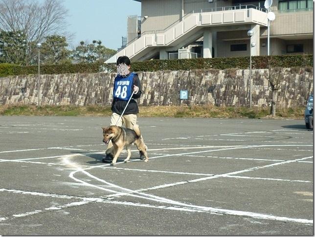 20160228NKC三重親睦展01-23