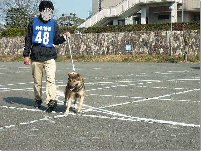 20160228NKC三重親睦展01-24