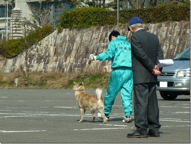 20160228NKC三重親睦展01-33