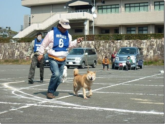 20160228NKC三重親睦展03-03