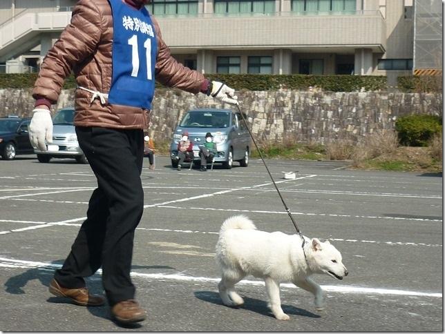20160228NKC三重親睦展03-06