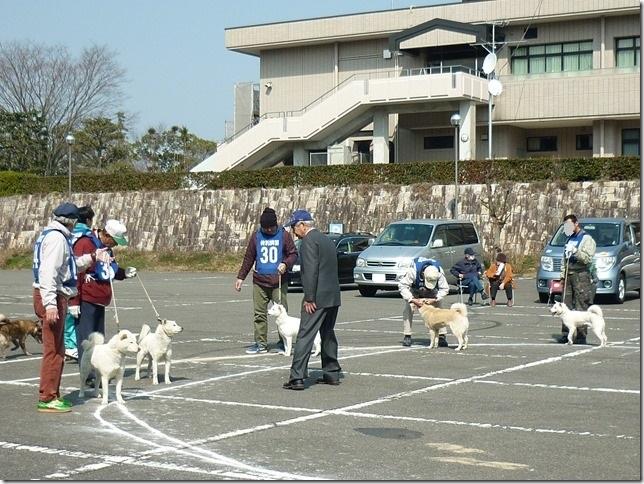 20160228NKC三重親睦展03-17