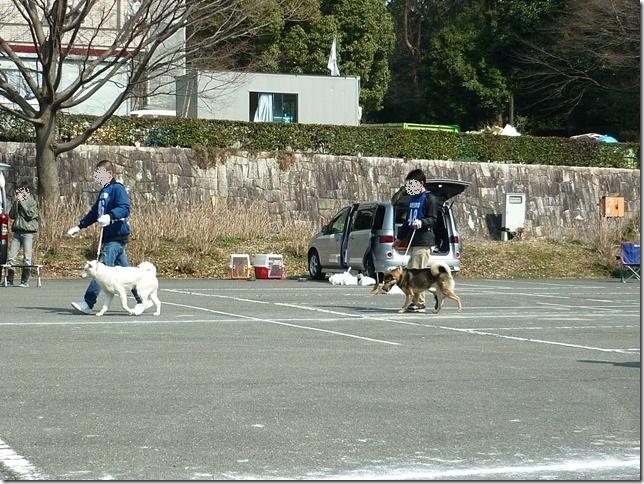 20160228NKC三重親睦展04-14