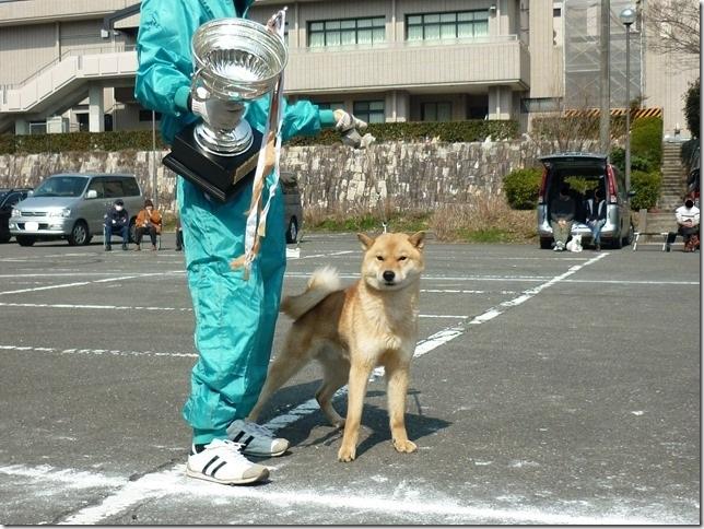 20160228NKC三重親睦展07-10