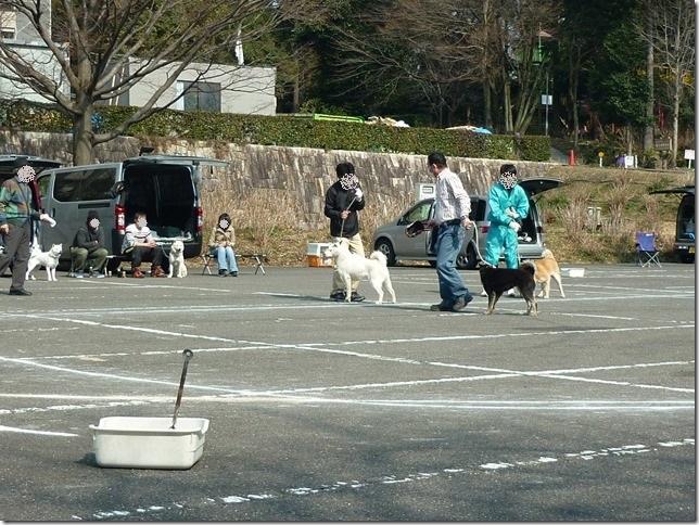 20160228NKC三重親睦展08-06