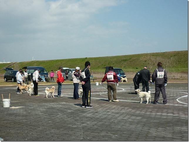 20160320NKC岐阜CH展03-33