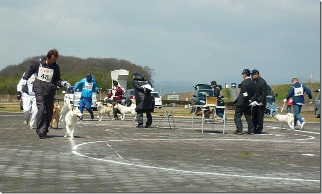 20160320NKC岐阜CH展04-19