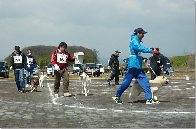20160320NKC岐阜CH展04-23