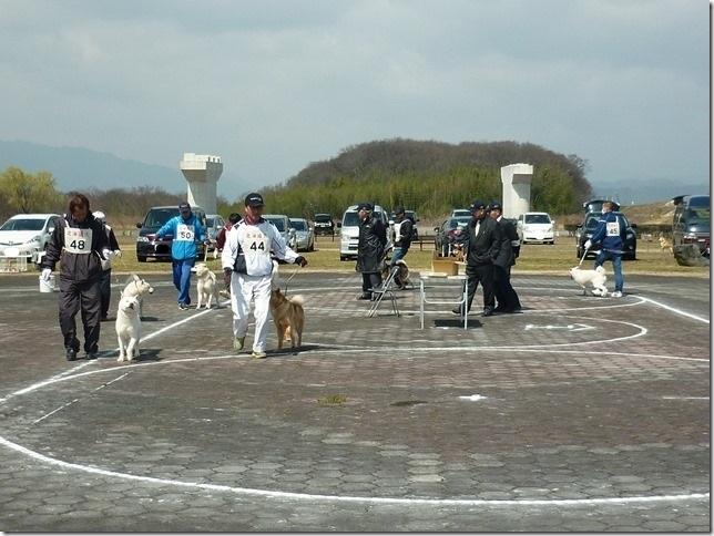20160320NKC岐阜CH展04-33