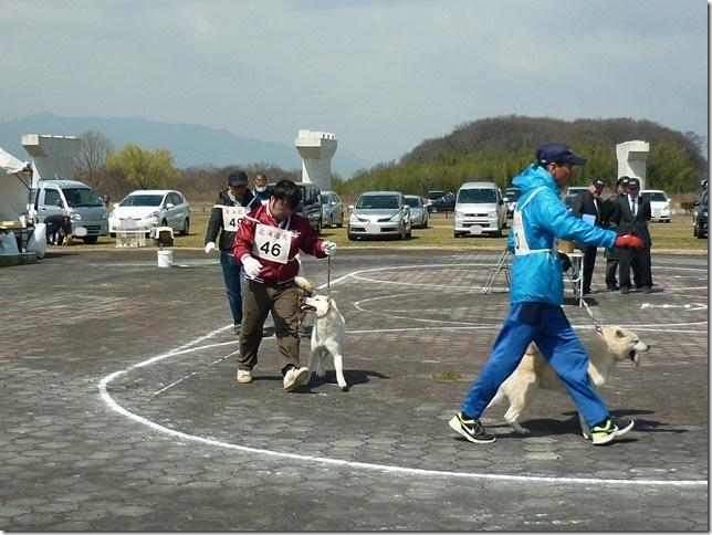 20160320NKC岐阜CH展04-36