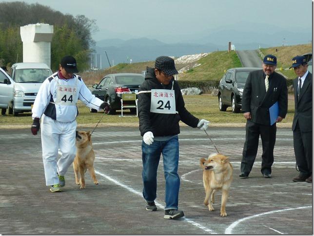 20160320NKC岐阜CH展06-33