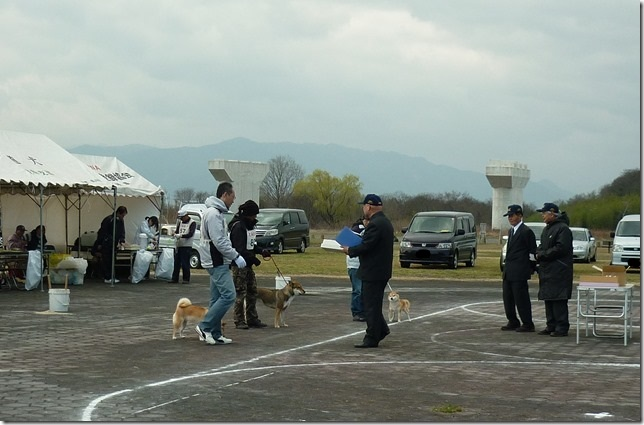 20160320NKC岐阜CH展07-08