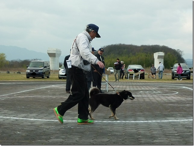 20160320NKC岐阜CH展07-13