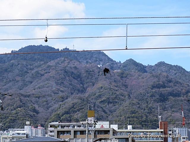 摩耶山 ケーブル駅