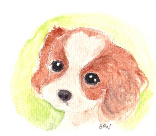 かまやつ犬2