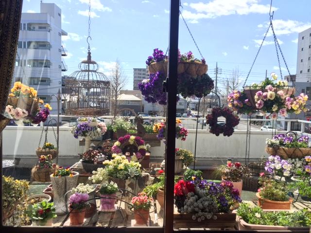 春色ガーデン