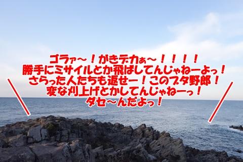 DSC00059_20160403203520c94.jpg