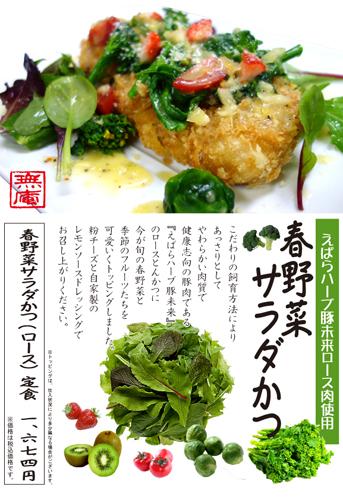 春野菜サラダかつ2