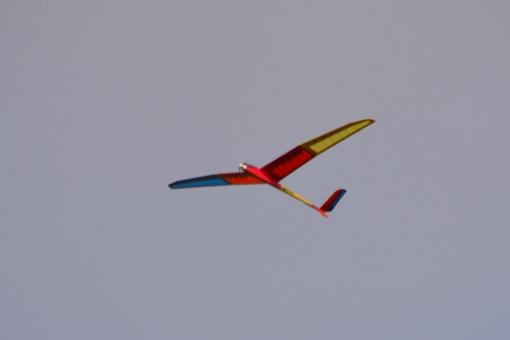 s16032020.jpg