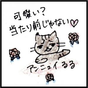 img060 - コピー (6)