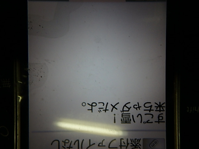 P2171297.jpg