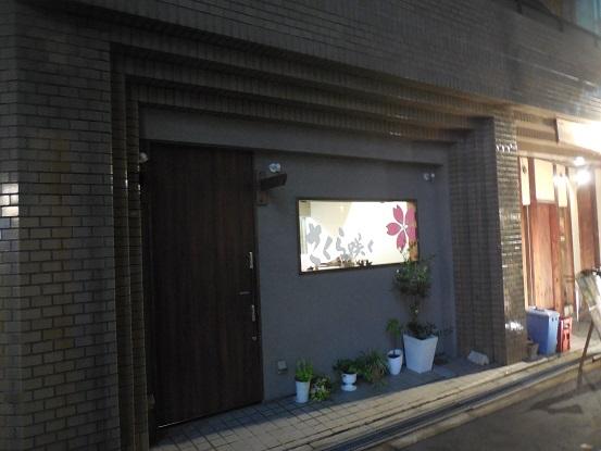 DSCN9169sakurasaku (1)